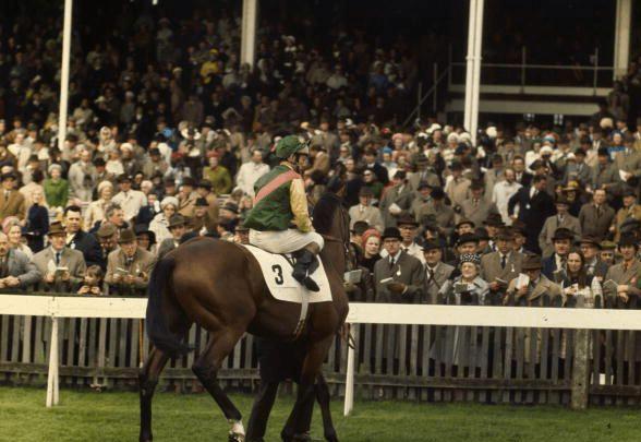 El Saint Leger Stakes, prueba final de los campeones